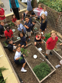 1st Graders Make Water in the Desert